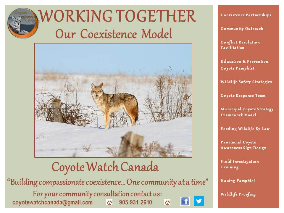 Working Together Building Compassionate Wildlife Coexistence